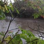 River Sept, 2015